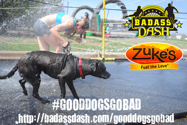 Zuke's Good Dogs Go Bad Contest